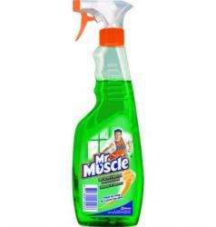 Mr Muscle płyn do mycia szyb spray 500ml zielony